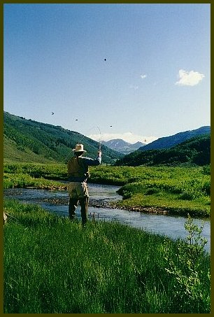 Fly fishing at Cement Creek